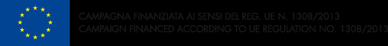 OCM Logo